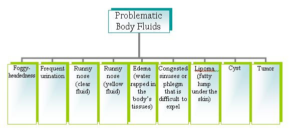 fluid metabolism chart